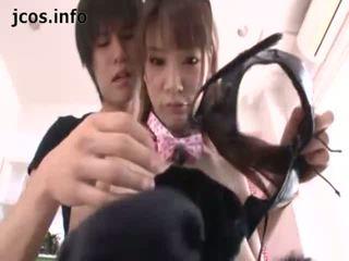 Playful japoneze kitty