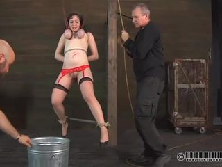 Ballerina needs banteng taming