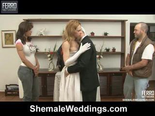 Mix Of Movies By Shemale Weddings