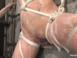 tied up, hd porn, bondage