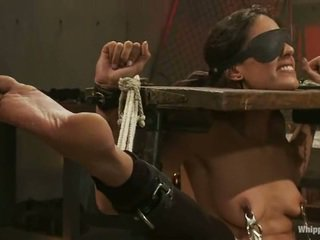 Lyla Storm Fisted And Dildoed In Bondage
