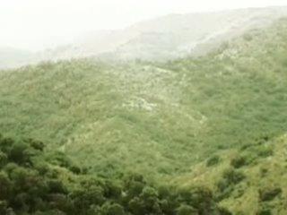Sierras al palo