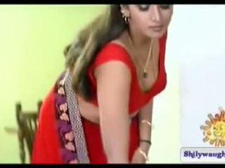 South indisch actrice bhuvaneshwari navel tonen
