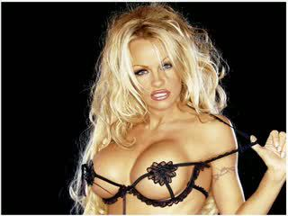 Pamela anderson: fria stor klantskallar porr video- dd