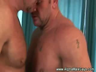 Reif hengst seduces ein gay von vorführung ab
