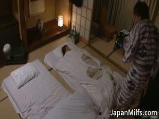 שחרחורת, יפני, בוגר