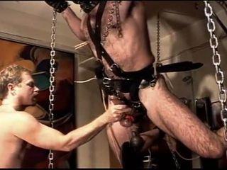 Dia has 56lb hanging dari buah zakar dan cums.
