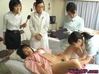 Orientalisch ehefrau ist examining female workers