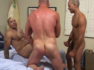 gays, homo, homosexual