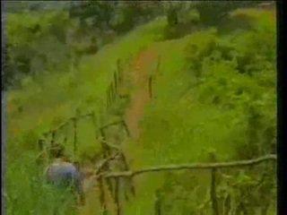 vendimia, africano, ébano