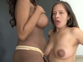 tits, bbw, black and ebony