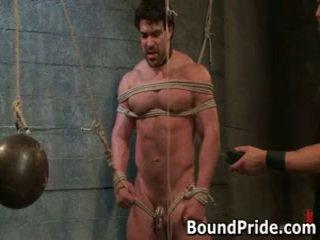 Brenn e chad em extraordinary gay slavery e tortura 17 por boundpride