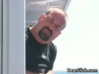 gay, bear, blowjob