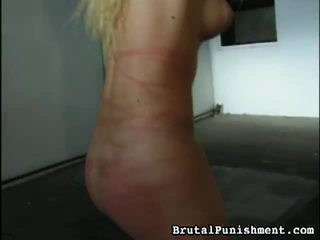 Great Collection Of BDSM Porn Clips Fr...
