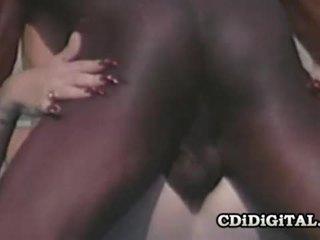 Lynn lemay 复古 金发女郎 pleasing 一 黑色 dong