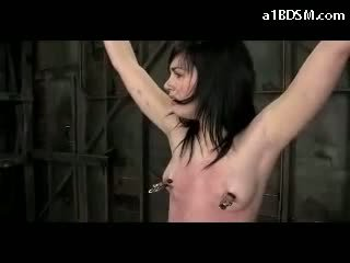 Blackhaired mädchen hanging mit tied arms und beine nipple weights tickled whipped muschi stimulated mit vibrator im die verlies