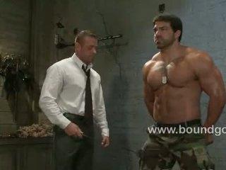 homoseksuāls, muskulis, āda