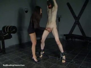 Slapping cazzo e ballbusting cazzo palle tortura (cbt)