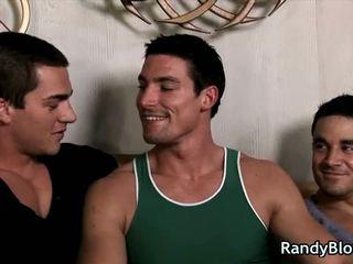 gay, gays, homo