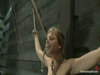 bondage sex, zien masochisme klem, overheersing seks