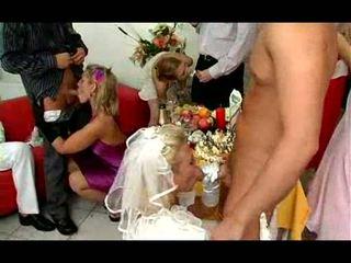Pernikahan pesta turns ke pesta liar video
