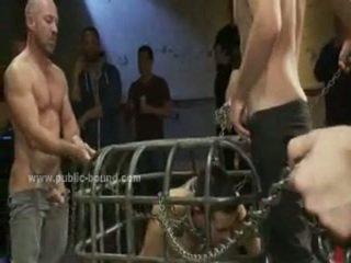 nieuw homo- film, heetste bizzare, echt sadomaso
