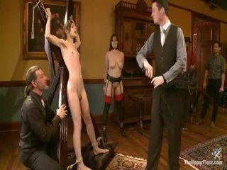 bondage sex, controleren discipline scène, masochisme video-