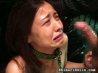 Lâu sadism khiêu dâm phim tại nóng shibari dolls bộ sưu tập