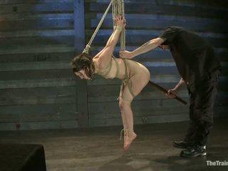 beste marteling scène, vol slavernij vid, vers maledom film