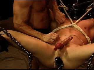 echt homo- kanaal, pervers, mooi stoeterij neuken