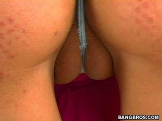 pussy hq, fun really best, camel toe rated