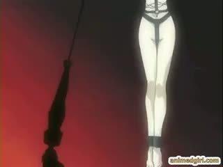 hentai, heetste ezel, nieuw hardcore actie