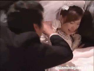 japānas jebkurš, vienmērīgs jebkurš, jautrība brides