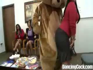 Dancingcock ryhmä kukko suking