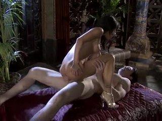 suuri ruskeaverikkö suuri, suuseksi sinua, emättimen seksiä katsella