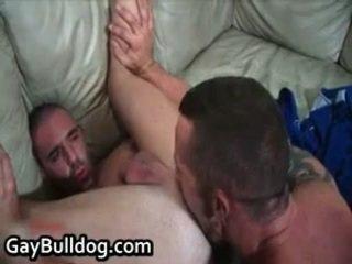 很 奇异的 queer 赃物 制造 出 和 penetrator engulfing 自由 色情 12 由 gaybulldog