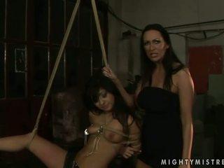 fresh humiliation, hq submission porn, mistress