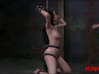 beste seks neuken, bdsm tube, gratis overheersing kanaal