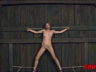 meer seks neuken, kwaliteit bdsm gepost, nominale overheersing video-