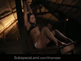 Rough Nipple Clamps Punishment for Bondage Slave Ass.
