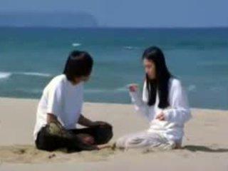 mais quente coreano ver, ideal amador grande, grande incondicional verificar