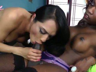 Ebony tranny and latina shemale fucking