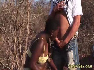 Africana garganta profunda safari orgía <span class=duration>- 12 min</span>