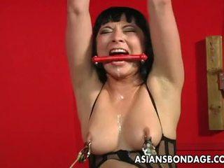 cute, big boobs, tied up