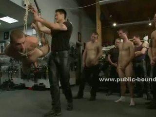 plezier groepsseks klem, ideaal homo-, groot leer