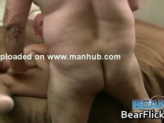 ideal white, chubby full, bear