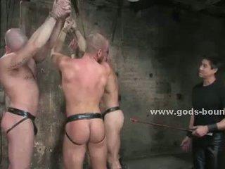 een homo-, heetste spier seks, een homp porno