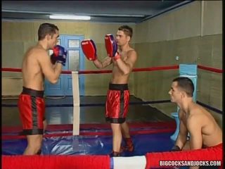 Anal Group Sex In The Boxing Ring