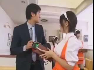 morena, japonês, uniforme