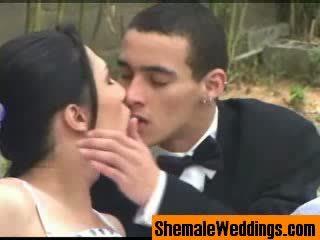 Shemale trans kāzas